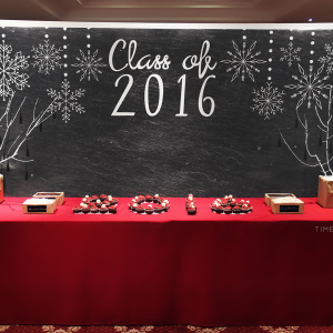 Winter Wonderland Graduation Party