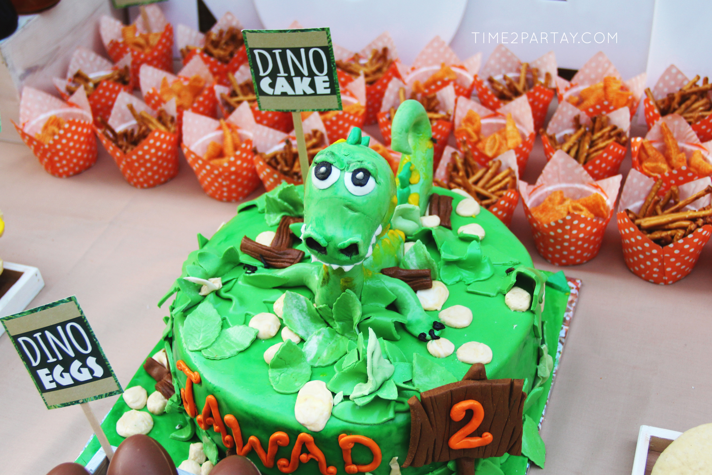 Dinosaur-Themed-Birthday-Party_14