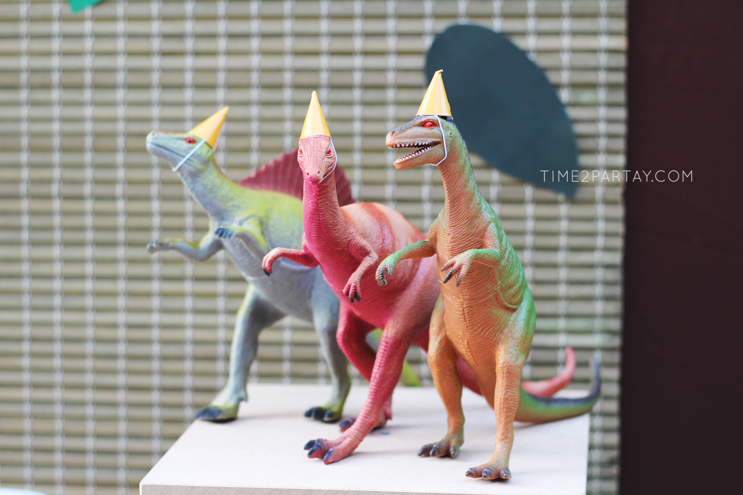 Dinosaur-Themed-Birthday-Party_8