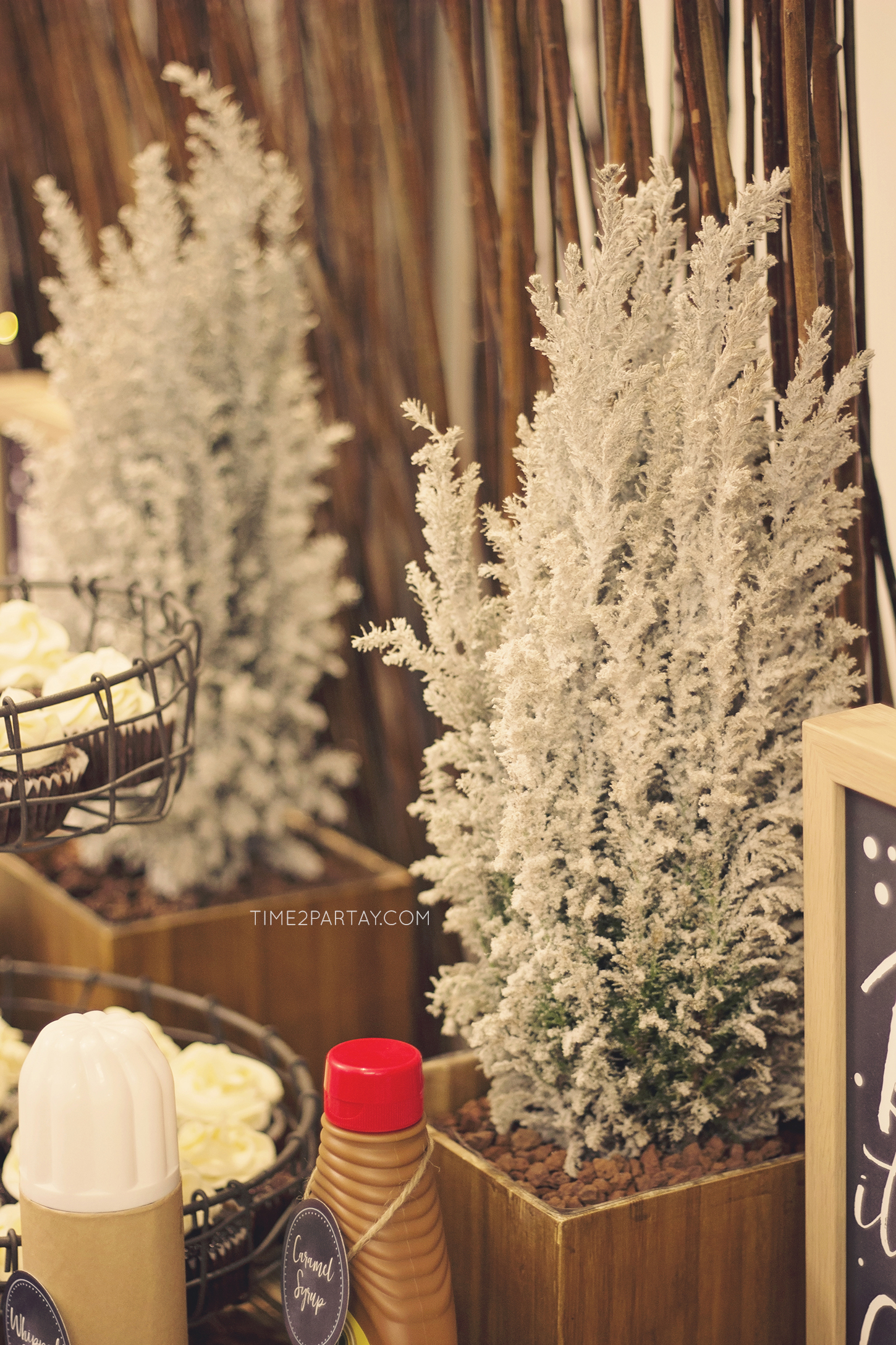 A Rustic Winter Welcome Baby Party Time2partay Com